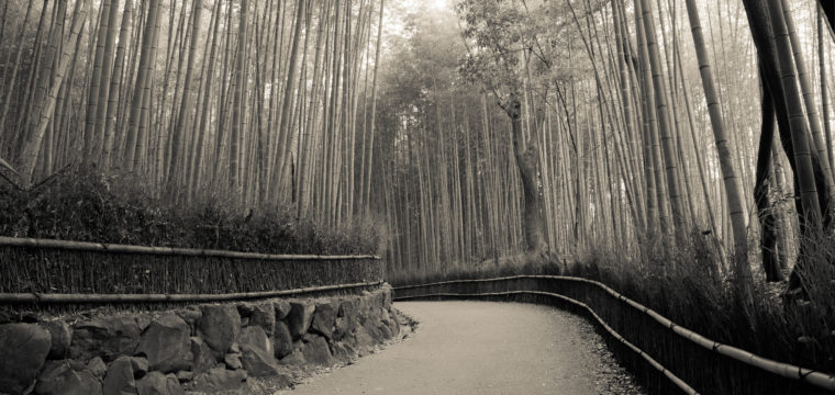 Way of the Bamboo